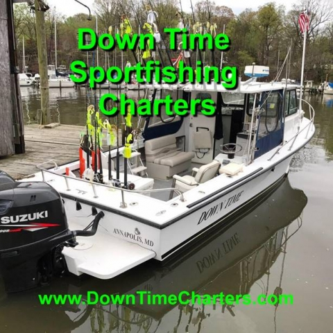 Downtime Charters